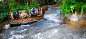 kali river rapids ride